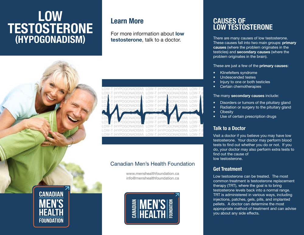 Low Testosterone PDF