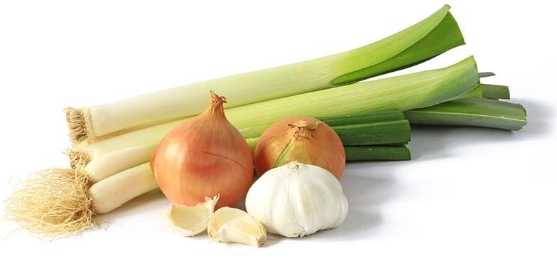 Leeks, shallots, and garlic