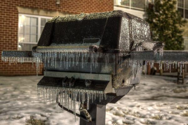 Frozen BBQ