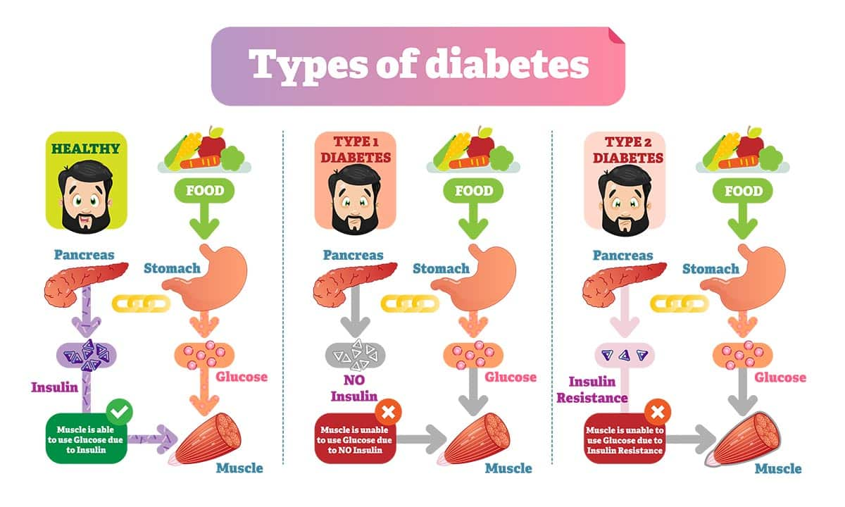 The infographic explains how diabetes affects your body