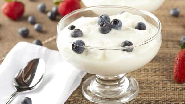 High protein Greek yogurt