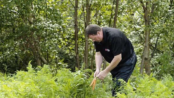 Darren Parks picking vegetables